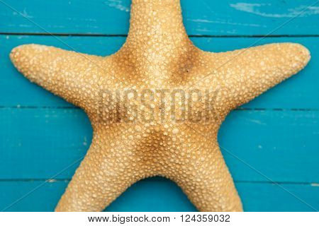 Starfish On Blue Wooden Boards. Part Close-up.
