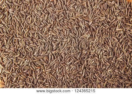 Caraway seeds background black background texture close-up