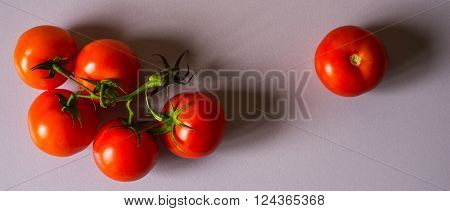 Tomatoes twig on the white background wide screen