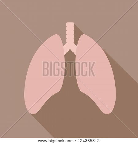 Human lung icon. Health care icon. Lungs - vector icon