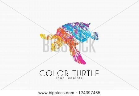 turtle logo design. Color turtle. Creative logo
