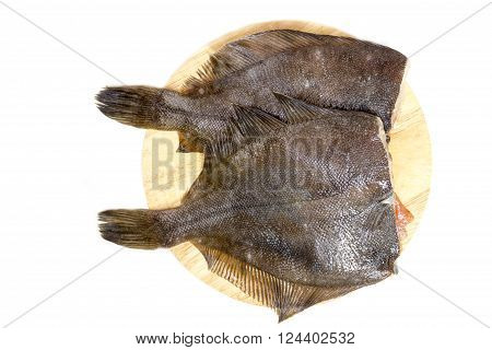 Raw fish flounder on a white background