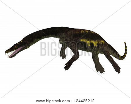 Nothosaurus Side Profile 3D illustration - Nothosaurus was a semi-aquatic carnivore reptile that lived in the Triassic Period of North Africa, Europe and China.