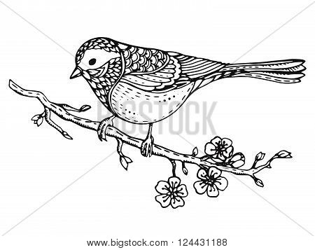 Hand drawn ornate bird on sakura branch with flowers. Black and white vector illustration. Isolated on a white background.
