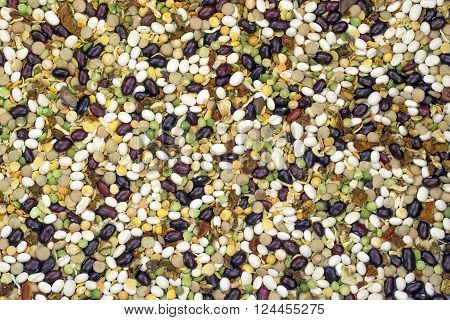 varicoloured bean and peas mix with spice ** Note: Visible grain at 100%, best at smaller sizes