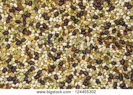 varicoloured bean and peas mix with spices ** Note: Visible grain at 100%, best at smaller sizes