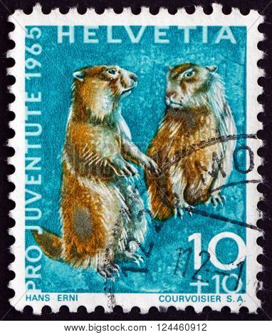 SWITZERLAND - CIRCA 1965: a stamp printed in the Switzerland shows Alpine Marmots Marmota Marmota Animal circa 1965