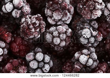 Close up view on frozen Blackberry fruits, food background