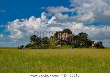 African savanna landscape serengeti national park Tanzania Africa