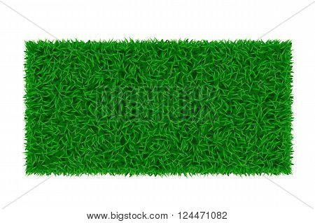 illustration of green grass rectangle type on white background