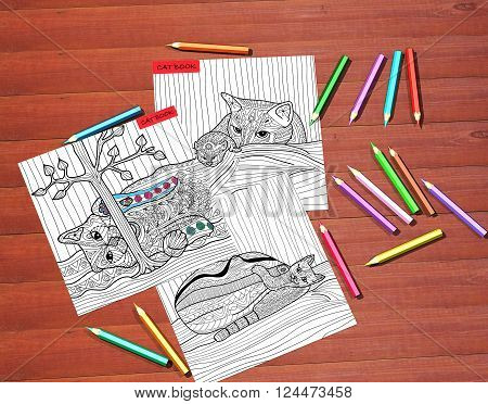The Cat book - adult coloring books stress relieving trend mindfulness concept