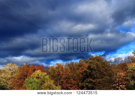 Autumn Color Trees and Storm Clouds Background
