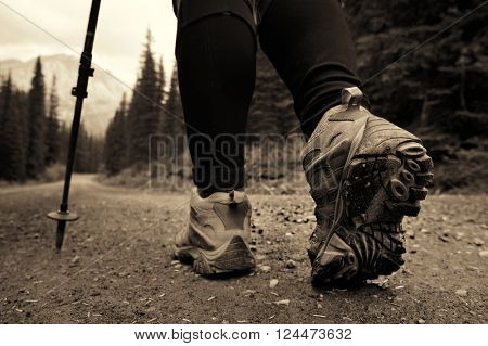 A female hiker in Banff national park view with mountains and forest in Canada.
