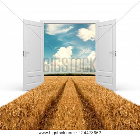 Road through wheat field  in opened door