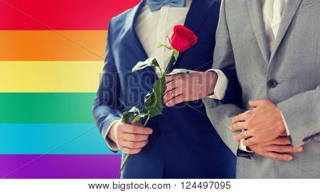 people, homosexuality, same-sex marriage and love concept - close up of happy male gay couple with red rose flower holding hands on wedding over rainbow flag background
