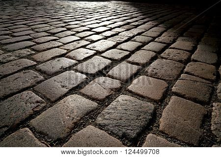 cobblestones in backlight at sunset in Magdeburg