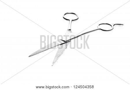 Hairdresser Or Barber Silver Professional Scissors