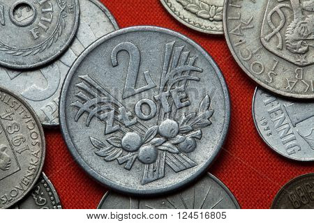 Coins of Communist Poland. Polish two zloty coin (1958) coined in the Polish People's Republic.