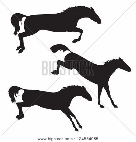 Silhouettes of horses. Black horses on isolated background. Set of wild horses. Vector horse collection. Collection of horse race horse jump and horse run
