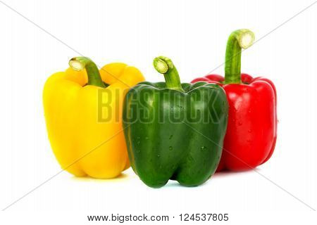 Three colored red Yellow green bell pepper vegetarian recipe paprika spice isolate on white background