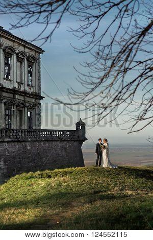 Romantic Newlyweds Posing Near Medieval Castle, Field Landscape