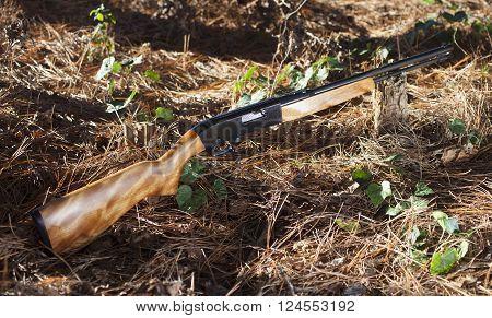 Rimfire rifle that shoots twenty two ammunition on a forest floor