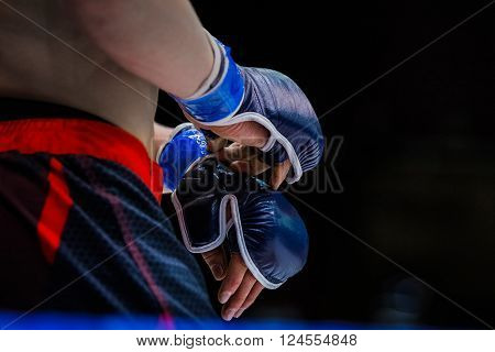 closeup gloves boxer. standing in corner of ring before fight