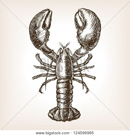 Lobster hand drawn sketch style vector illustration. Comic book style imitation. Vintage retro style. Conceptual illustration