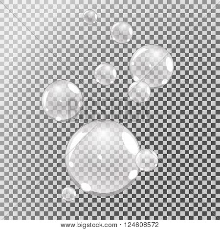underwater bubbles water bubbles on transparent background vector
