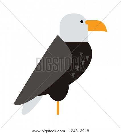 North American bald eagle raptor wildlife bird and hawk predator animal cartoon vector.