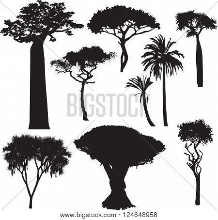 set black of silhouettes of African trees