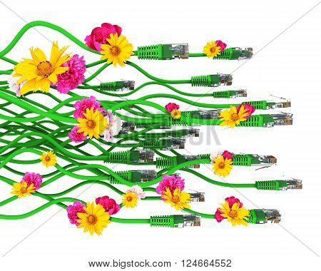 Computer cables with flowers isolated on white background. 3D illustration
