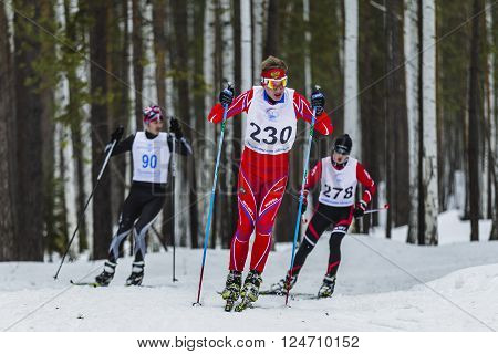 Kyshtym, Russia -  March 26, 2016: group of skiers male athletes running through woods during Championship on cross country skiing