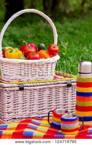 Picnic on the grass. Picnic basket with vegetables. A thermos of tea.