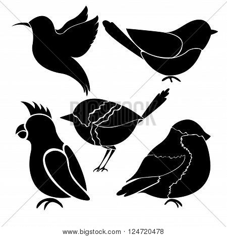 Silhouettes of different birds on white background. Silhouettes of different birds on white background. Hummingbird colibri titmouse bullfinch parrot.