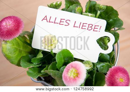 Alles Liebe - the german words for all the best
