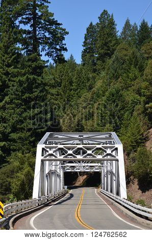 BRIDGE ON HIGHWAY 101 IN THE HUMBOLDT REDWOODS