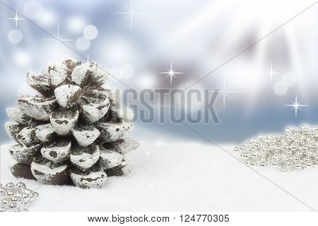 pinecone in snow with sun and sky