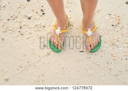 Green flipflop sandals on sea beach, Thailand