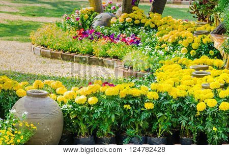 Landscaped flower garden with lots of colorful blooms on summer.