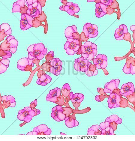 Pink bergenia crassifolia blossom seamless pattern. Vector hand-drawn illustration