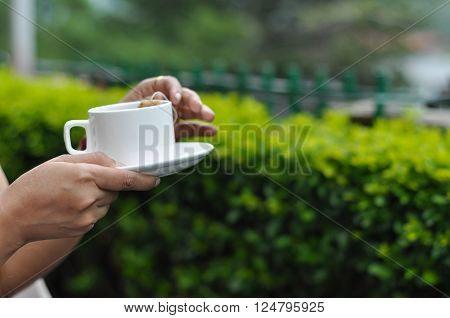 Woman drinking herbal green tea in tea gardens with white cup. The face of the women is not in the image and the cup in her hand is in sharp focus. The beautiful green background of the tea garden makes it more creative and useful.
