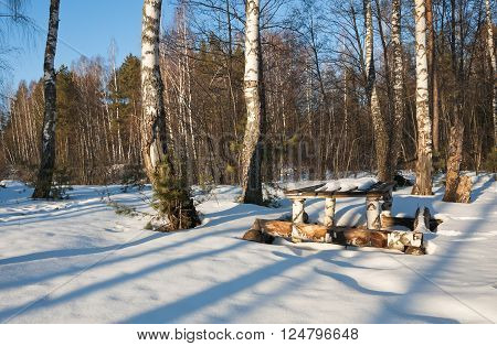 Table of logs in a birch forest in winter