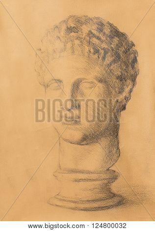 Hand drawn man head, Gypsum bust drawn. Rome Empire man