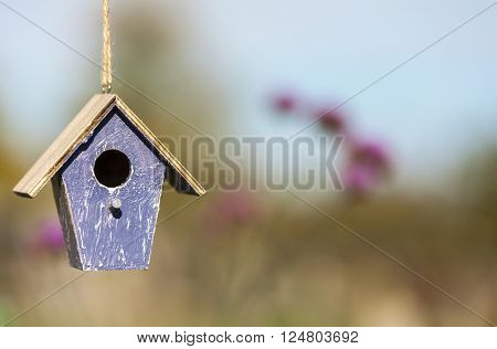 A bird house or bird box in autumn, fall, summer or spring sunshine with natural countryside flowers in the background