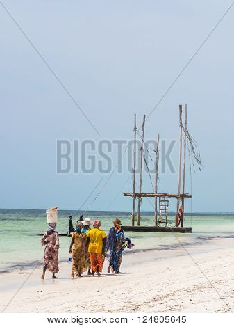 PAJE ZANZIBAR - MARCH 30 2016: Local women going fishing on a beach in Zanzibar Tanzania.