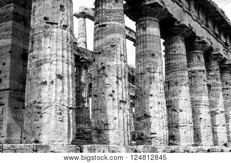Temple Of Neptune In Black And White The Famous Paestum Archaeological  Site. Italy