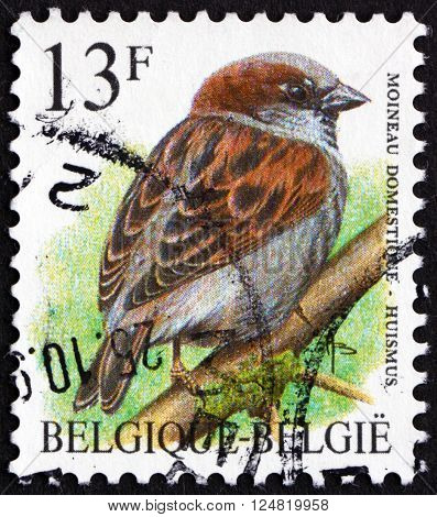 BELGIUM - CIRCA 1992: a stamp printed in the Belgium shows House Sparrow Passer Domesticus bird circa 1992