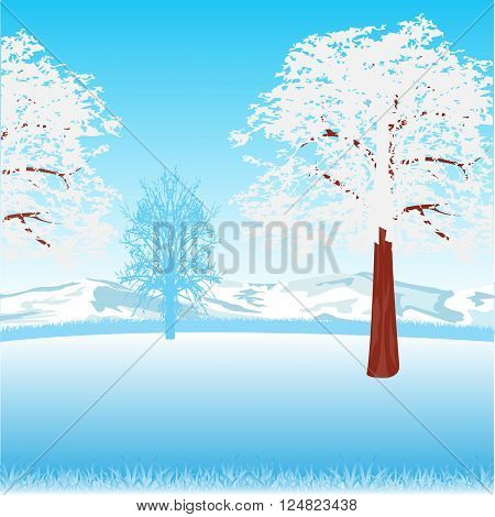 The Clean winter landscape with tree on glade.Vector illustration