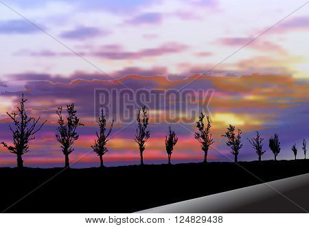 Nostalgic dark landscape with road, silhouettes of trees and clouds